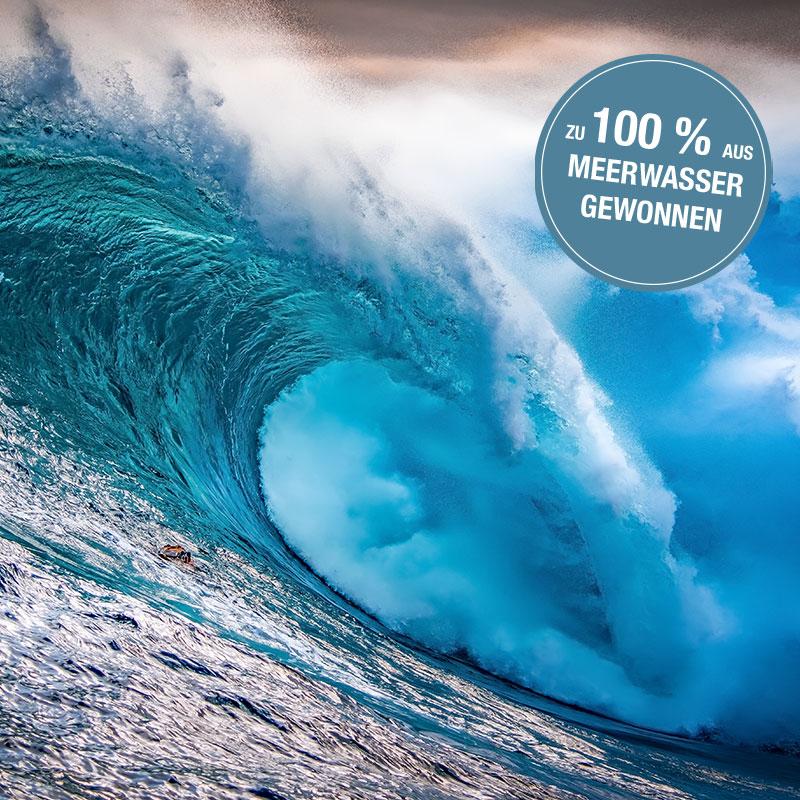 Jungbrunnen-Magnesium-Kapseln-Meerwasser-100