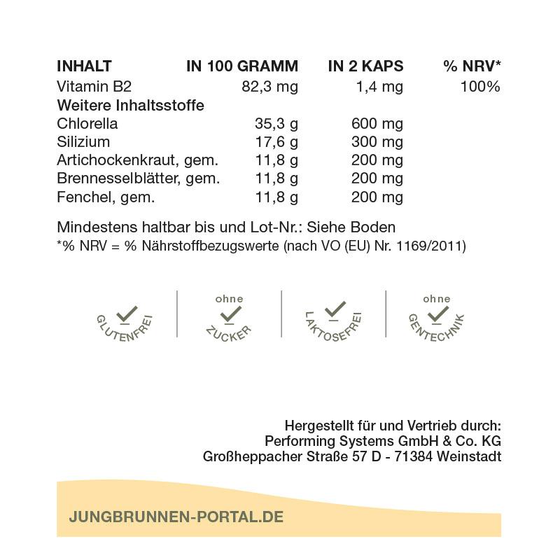 Jungbrunnen-Kur-Produktinfo-3